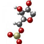 molecule aloe vera bio